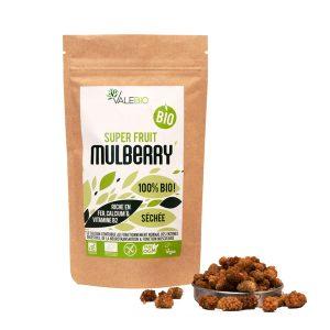 Mulberries - super aliments - complément alimentaires