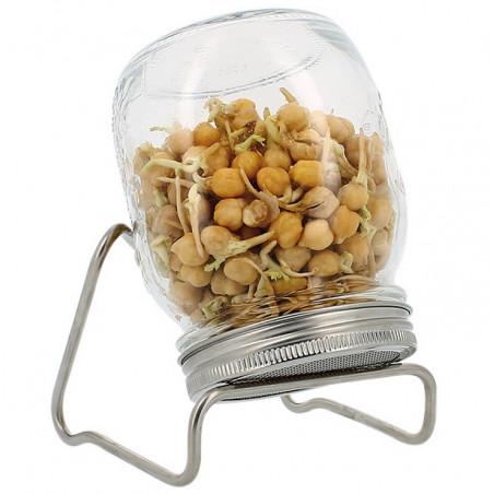 Germoir en verre Eschenfelder, pour faire germer facilement ses graines à la maison