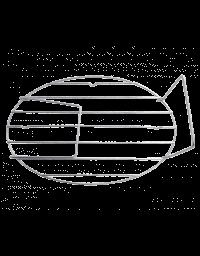 grille roaster petit modele