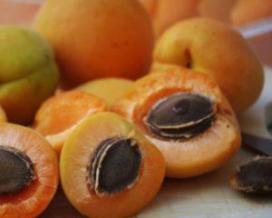 blender-soupe-abricot