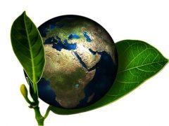 Bio cohérence : respecter la nature et les hommes.